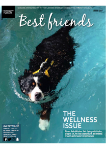 Best Friends Newsletter Spring 2017