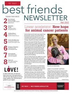 Best Friends Newsletter Fall 2013