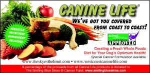 Canine Life