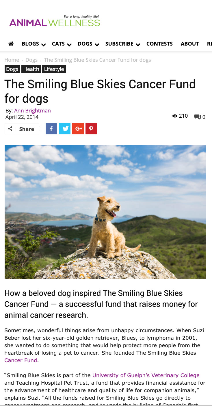 Animal Wellness: The Smiling Blue Skies Cancer Fund for dogs