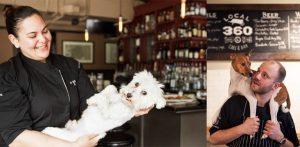 Canine Cancer Cuisine: Article by Suzi Beber in City Dog Magazine