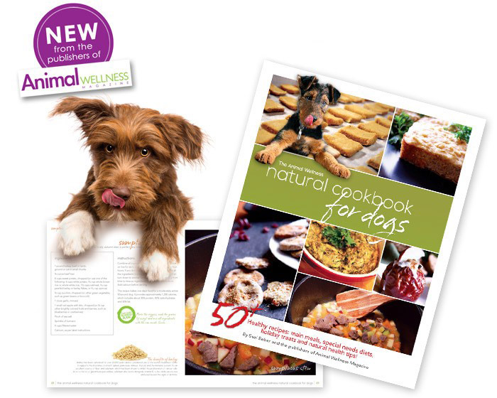 Canine Cancer Cuisine: Article by Suzi Beber in City Dog Magazine