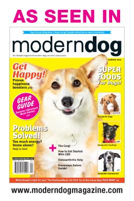 As Seen in MOdern Dog Summer 2020