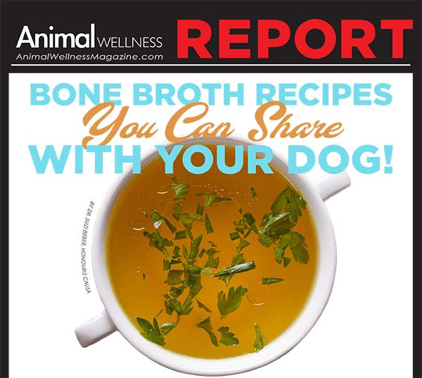 Bone Broth Recipes You Can Share with Your Dog